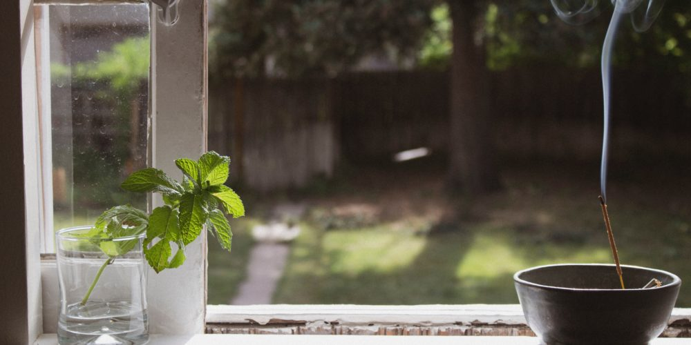 windowsill looking out onto a garden with a mint sprig in a mason jar in focus